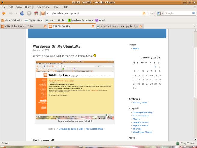 Tampilan WordPress dengan menggunakan XAMPP sebagai servernya