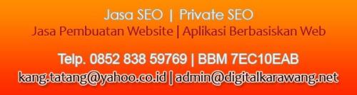 jasa seo - jasa pembuatan website